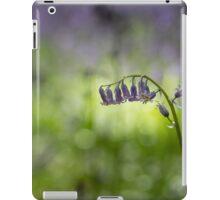Seclusion iPad Case/Skin