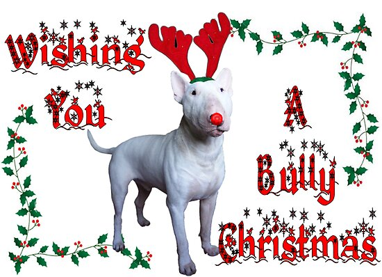 Bully Christmas by Louise Morris
