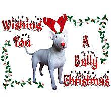 Bully Christmas Photographic Print