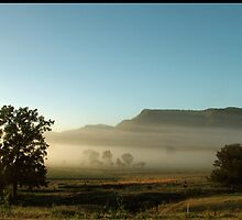 Brokeback Mountain Hunter Valley by Janette Rodgers