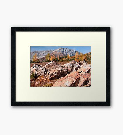 Autumnal mounts Framed Print