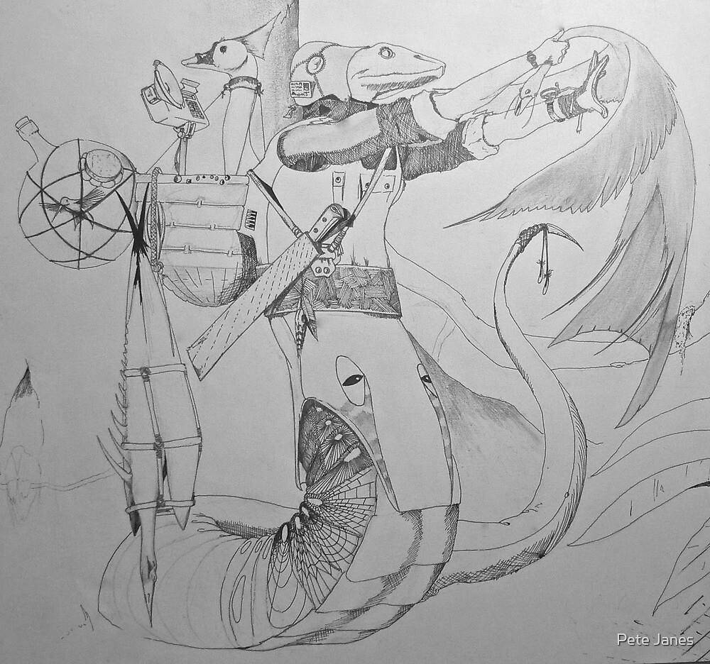 The Birdcatcher's Lightning Strike by Pete Janes