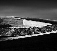 Eastern Washington: Wheatfield in Winter by Mike Irwin