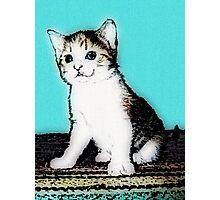 Retro Kitty Photographic Print