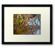 Fall colors reflected on Lake Telemark. Framed Print