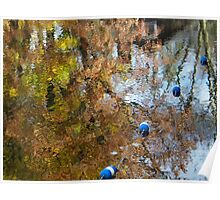 Fall colors reflected on Lake Telemark. Poster