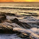 Rocky Shores by Barbara  Brown
