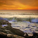 Sunset Wave by Barbara  Brown