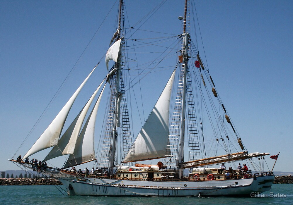 The One & All Brigantine Tall Ship - Youth Development Sail Training by Gillian Bates
