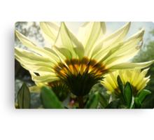 Flower Lamps Canvas Print