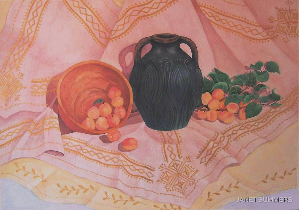 """ Copper, Bronze and Apricots"" by JANET SUMMERS"