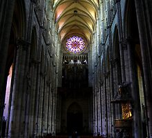 Amiens Cathedral by DaveButt