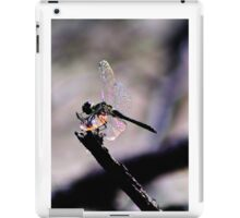 Dragonfly Wings iPad Case/Skin