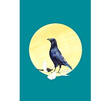 Crow Photographic Print