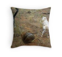 WHAT HAVE WE HERE? Throw Pillow