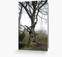 Box hill giant Greeting Card