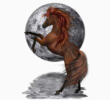 Moon Shadow .. a wild horse Womens Fitted T-Shirt