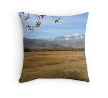"""East Side Colors"" Throw Pillow"