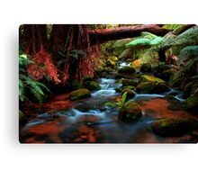 Cuckoo Falls, small cascades Canvas Print