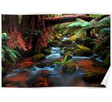 Cuckoo Falls, small cascades Poster