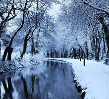Monmouthshire & Brecon Canal by JM-Photography