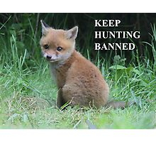 The Fox cub - keep hunting banned Photographic Print