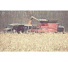 The Harvest Photographic Print