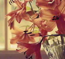 Orange Bliss by Awdrey