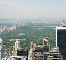 Hazy Central Park from Top of the Rock by Emma-Rose Fitzpatrick