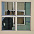 Windows by Kasia Nowak