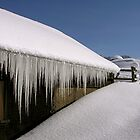 melting icicles by mamba