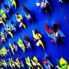 Pinwheels by daniellesalmon