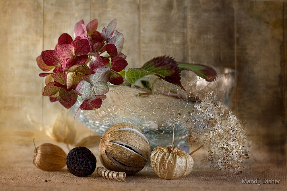Autumn fruit by Mandy Disher