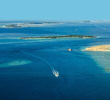 The Maldives - North Ari Atolls by Digital Editor .