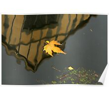 Leaf in the Mote Poster