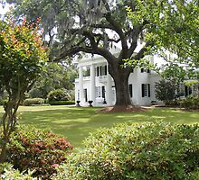 Plantation in South Carolina by KennethWright