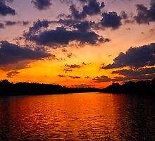 The Horizon Calls by Paul Gitto