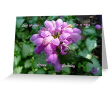 Happy Birthday ..Card, purple flower Greeting Card