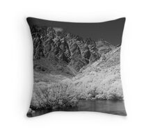 Towards The Remarkables Throw Pillow