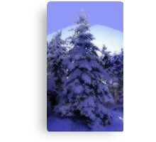 Nature's Christmas Canvas Print