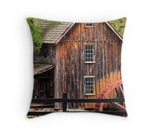 Sixies Mill Closeup Throw Pillow