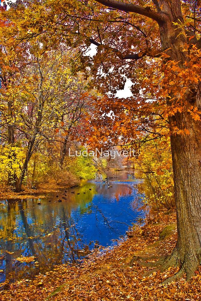 Amazing Fall by LudaNayvelt