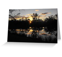 Renmarks sun piercing through the river red gums. Greeting Card