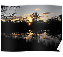 Renmarks sun piercing through the river red gums. Poster