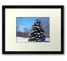 Snow Queen 1 Framed Print