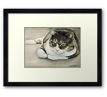 Tubby Tabby Cat Watercolor Painting Framed Print
