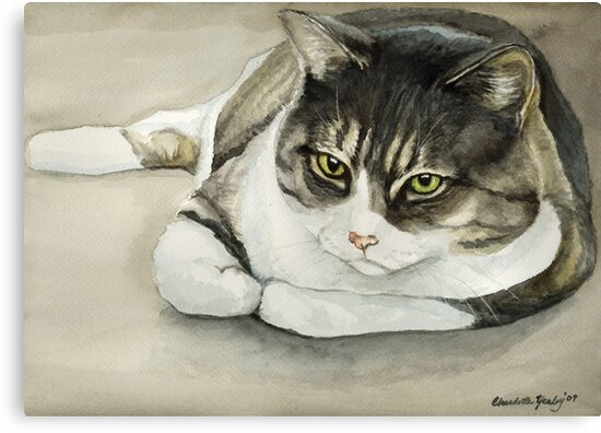 Tubby Tabby Cat Watercolor Painting by Charlotte Yealey