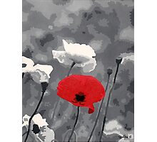 One Red Poppy Photographic Print