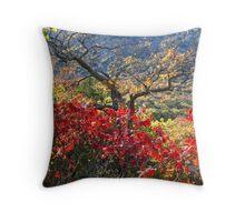 Sumac & Oak Throw Pillow