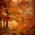 Autumn Tapestry by AngieM